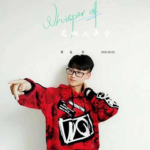 内地著名歌手唐高富新歌《爱的太辛苦》正式发行